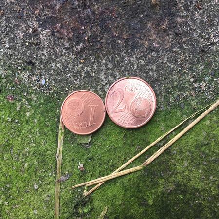 Geld beschaffen (1/3)
